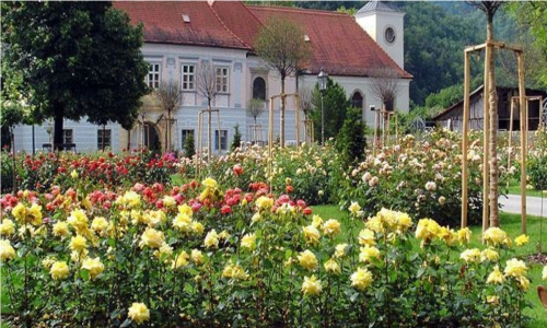 Rosengarten Pitten: Ausflugsziel in 7 km